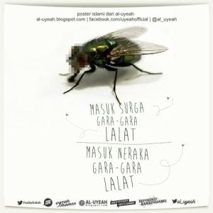 lalat blog